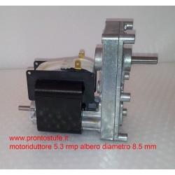 Motoriduttore 2RPM compatibile Extraflame